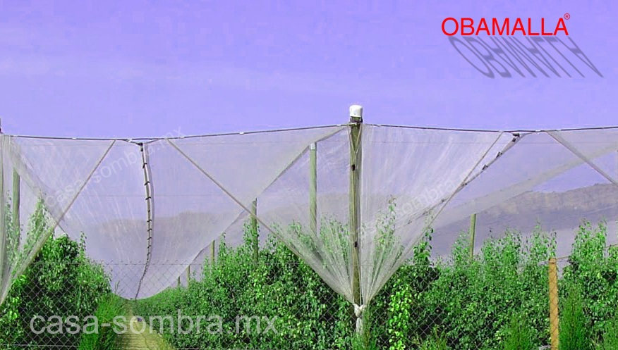 OBAMALLA casa sombra protege tus cultivos