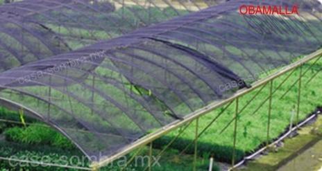 Protección de los rayos dañinos del sol con casa sombra OBAMALLAS