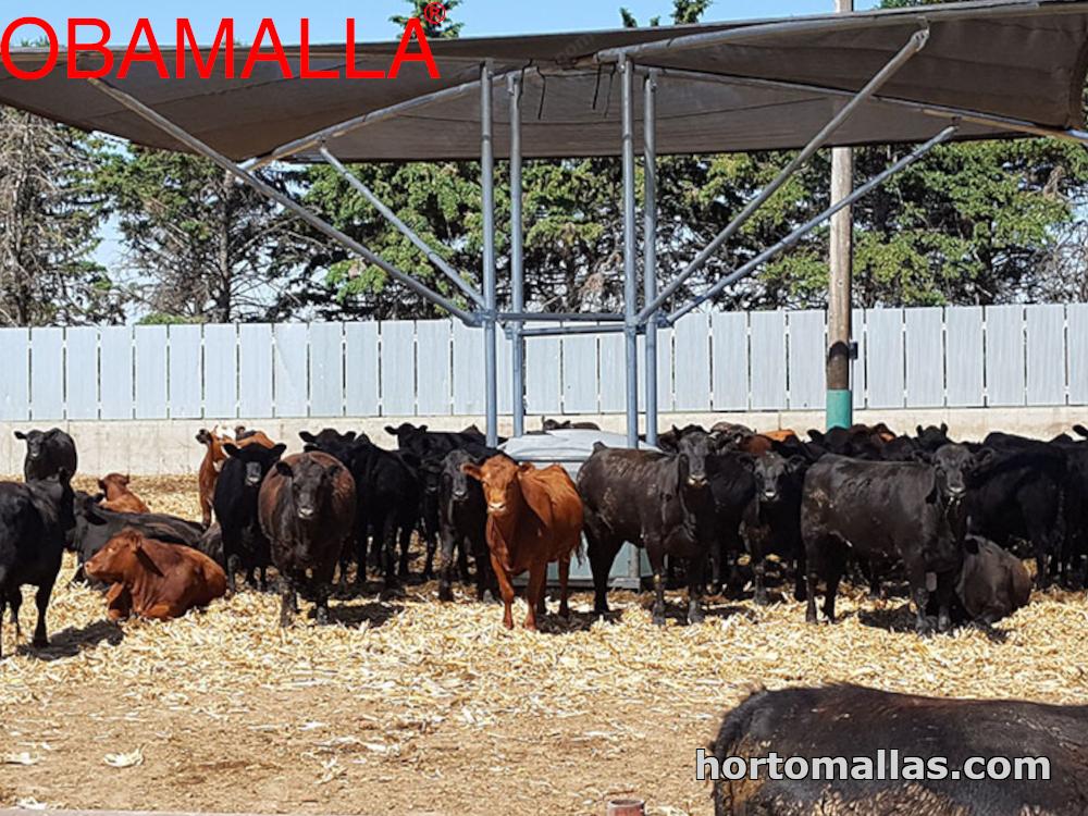 Red sombreadora para ganado instalada en un corral